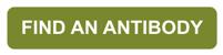 cta_find_antibody