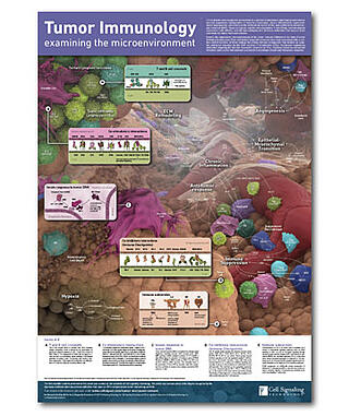 腫瘍免疫学のポスター
