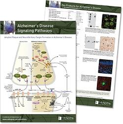 Alzheimers Disease Signaling Pathway