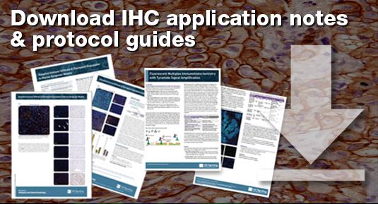 19-IHC-52181-IHC Banner_535x289-v.4