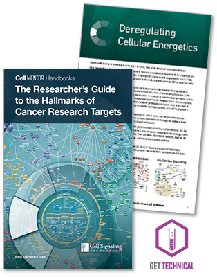The Researcher's Guide to the Hallmarks of Cancer Research Targets eBook