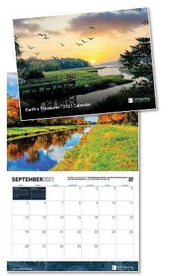 20-PEP-38697-LDP 2021 Calendar