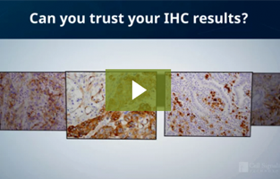 Can you trust your immunohistochemistry (IHC) results?
